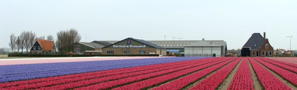 2014 Bedrijf in bloemen smal