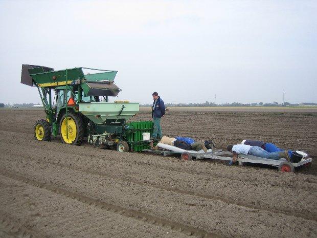Planten JD 6210 + overschieter + lepelaar Rik v Kuyeren Hans de Wit 09-10-07 (3)